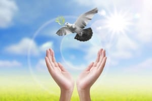 healing with spiritquest allows you to soar