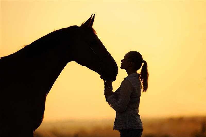 Healing Sedona Retreat Session offered in Ariziona :Horse Medicine Human Spirit